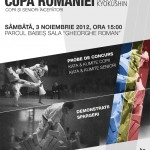 Romanian Cup for Children and Adults Beginners, Cluj-Napoca 2012